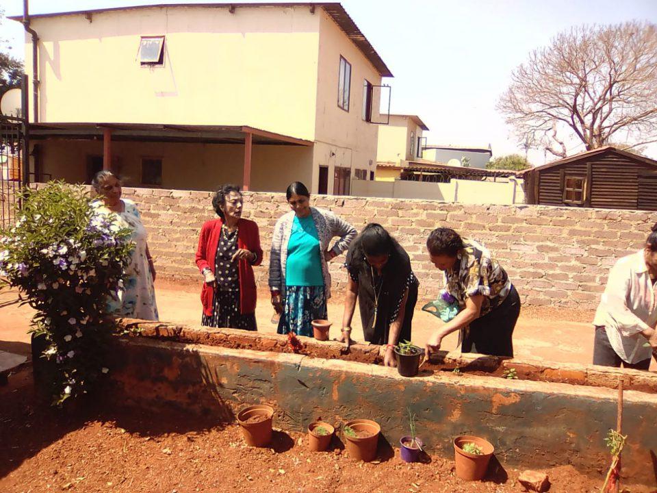 Senior self sustainment initiative